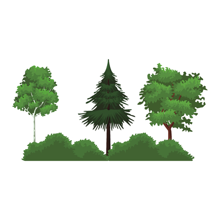 Trees with bushes cartoon vector illustration graphic design vector illustration graphic design