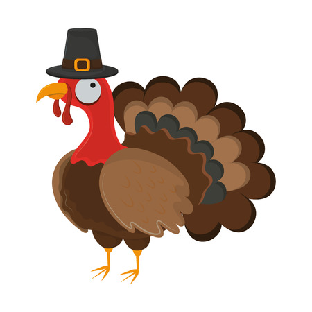 thanksgiving day turkey with pilgrim hat white background vector illustration graphic design