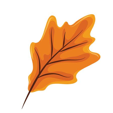 Thanksgiving day les feuilles d'automne en fond blanc vector illustration graphic design Vecteurs