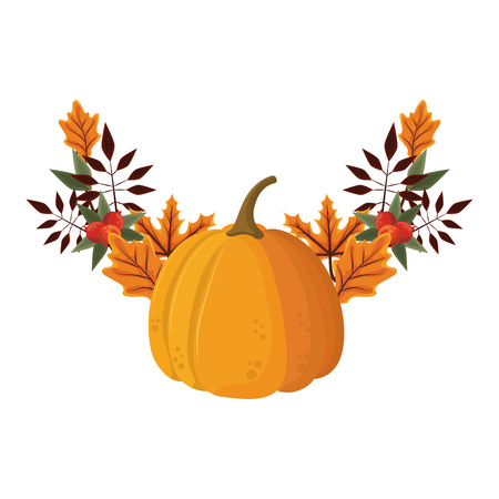 thanksgiving day pumpkin with autumn leaves in white background vector illustration graphic design  イラスト・ベクター素材