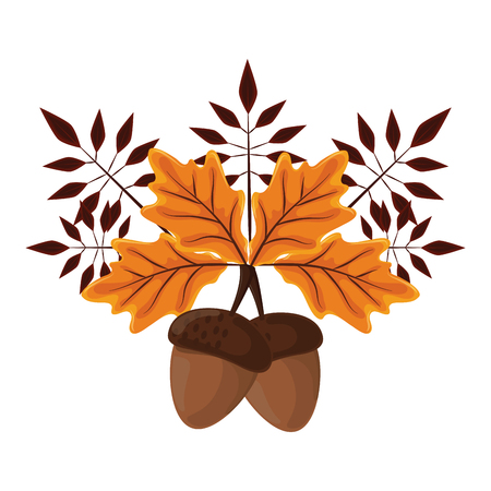 thanksgiving day nuts with autumn leaves in white background vector illustration graphic design