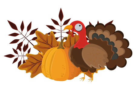 thanksgiving day turkey with pumpkin and autumn leaves in white background vector illustration graphic design