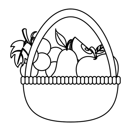 thanksgiving day fruit basket drawing in white background vector illustration graphic design