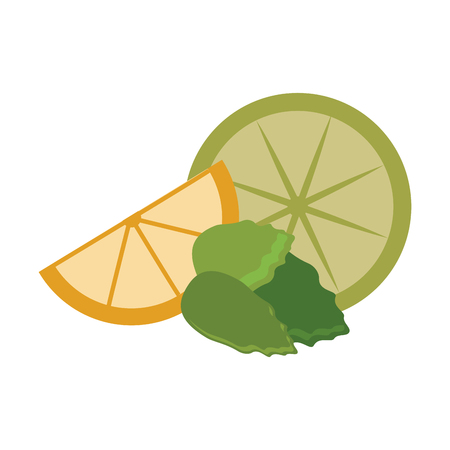 lemons slices and peppermint vector illustration graphic design Illustration
