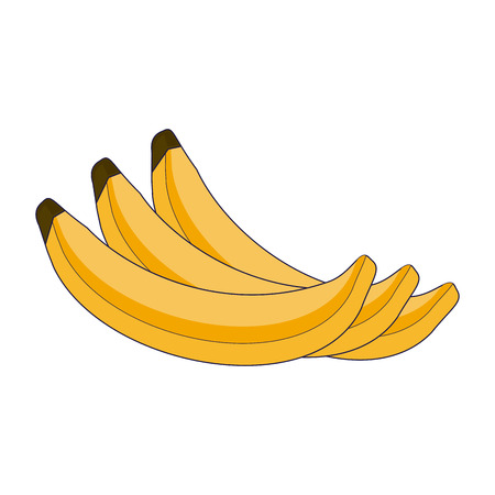 Fruits banana cartoon vector illustration graphic design