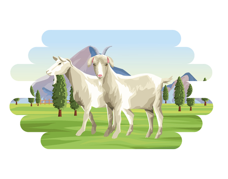 Goats farm animal over landscape vector illustration graphic design