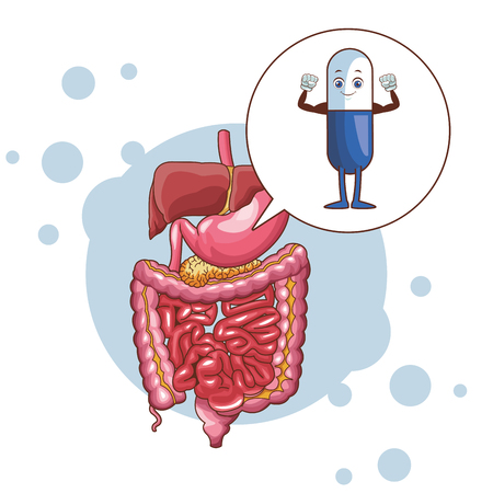 digestive system with pills vector illustration graphic design