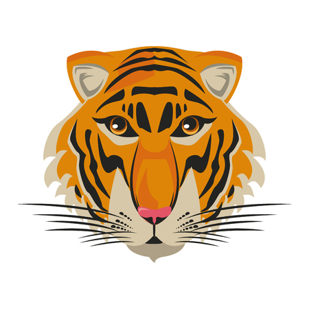 Beautiful tiger head vector illustration graphic design Vektorové ilustrace