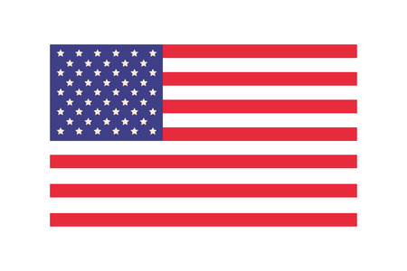 american flag cartoon vector illustration graphic design