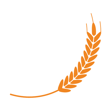 Wheat food symbol isolated leaf vector illustration graphic design Ilustração