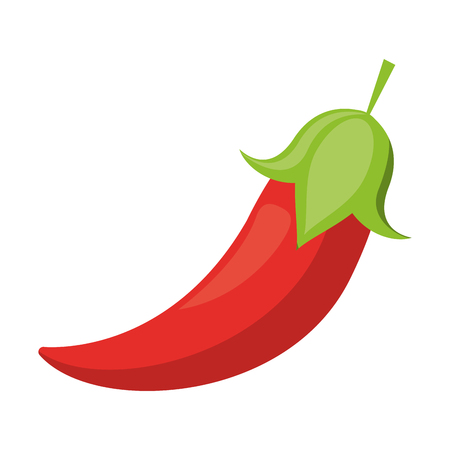chilli fresh vegetable cartoon vector illustration graphic design