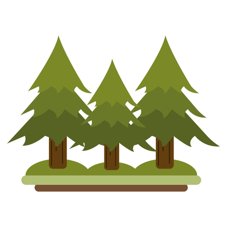 pine trees in nature scenery isolated vector illustration graphic design Illustration