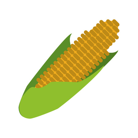 corn fresh vegetable cartoon vector illustration graphic design Standard-Bild - 117282640