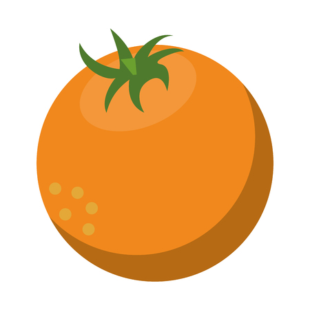 orange fresh fruit cartoon vector illustration graphic design