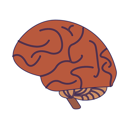 human brain symbol isolated vector illustration graphic design
