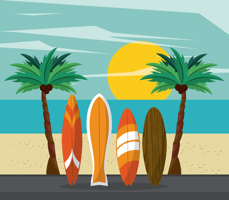 surf time cartoon surfboards and palms trees over beach sunrise background vector illustration graphic design