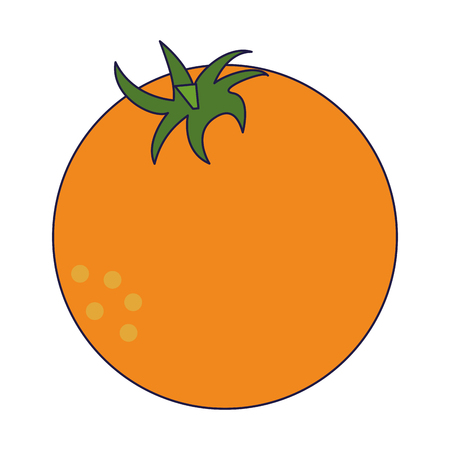 orange fresh fruit cartoon vector illustration graphic design