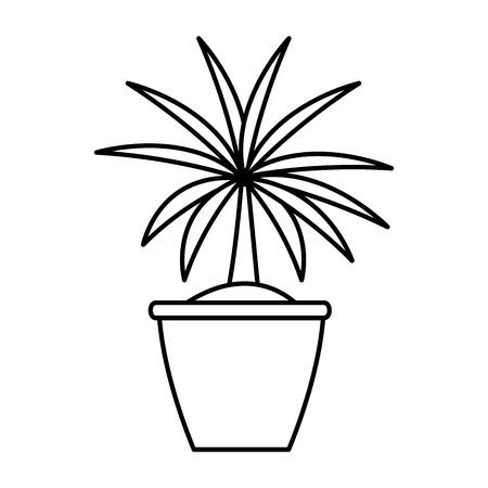 plant nature indoor vector icon illustration graphic design