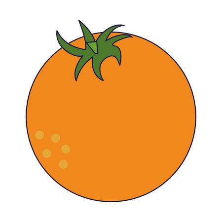 orange fresh fruit cartoon vector illustration graphic design Illustration
