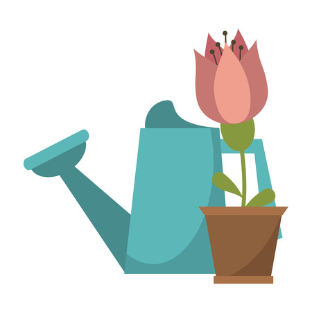 Gardening plants and tools water can and flower in pot