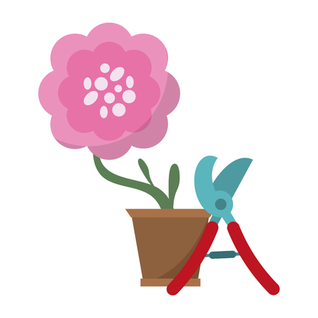 Gardening plants and tools flower in pot with scissors
