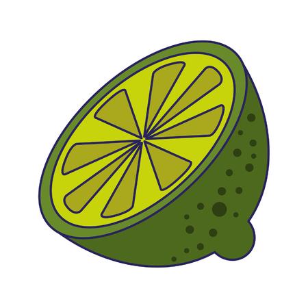 Lemon citric fruit isolated vector illustration graphic design 向量圖像