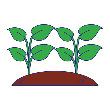 sown plants garden cartoon vector illustration graphic design