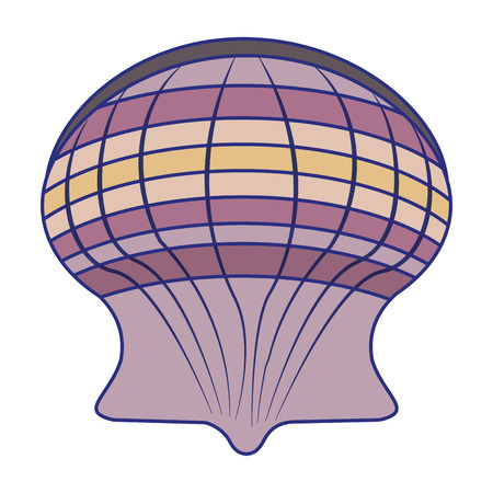 Sea shell symbol cartoon vector illustration graphic design