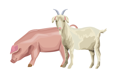 pig and goat icon cartoon vector illustration graphic design