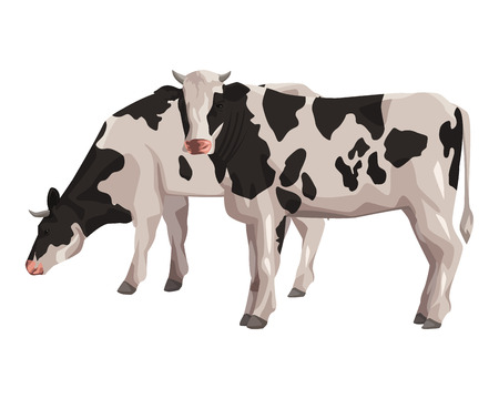 cow icon cartoon isolated vector illustration graphic design