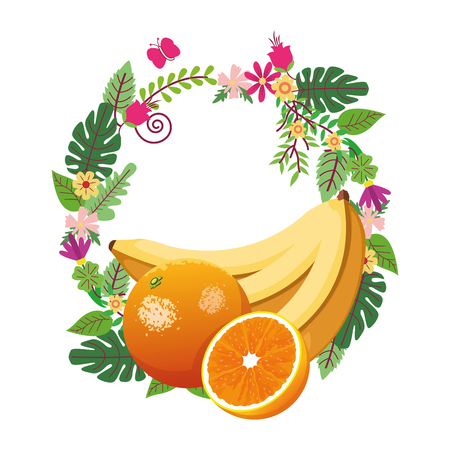 banana and orange icon cartoon with floral arragement vector illustration graphic design