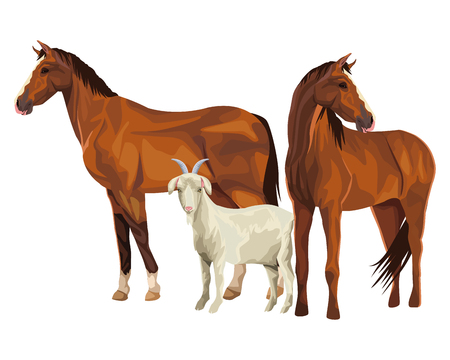 horse and goat icon cartoon vector illustration graphic design