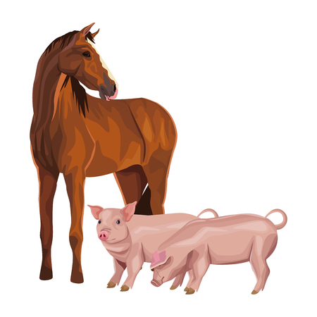 horse and pig icon cartoon vector illustration graphic design