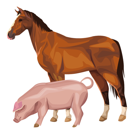 horse and pig icon cartoon vector illustration graphic design Vecteurs