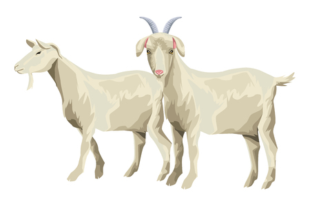 goat icon cartoon isolated vector illustration graphic design Illustration