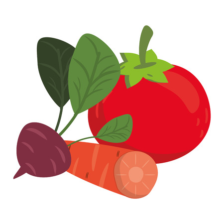 Tomato and carrot with radish vegetables Ilustrace