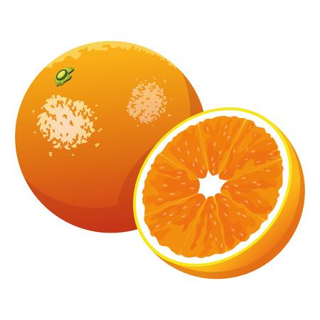 orange icon cartoon isolated vector illustration graphic design Çizim