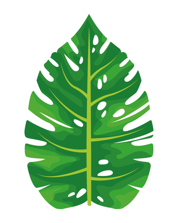 leaf icon cartoon vector illustration graphic design