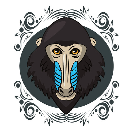 Mandrill face cool sketch on antique round frame vector illustration graphic design