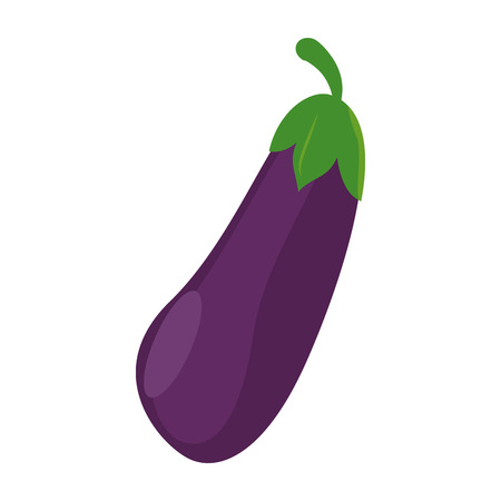 Eggplant fresh vegetable food vector illustration graphic design Ilustração