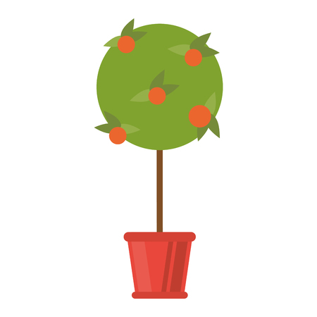 Orange tree in bucket cartoon isolated