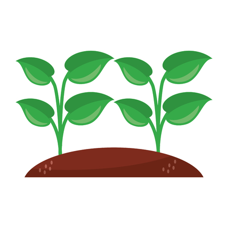 sown plants garden cartoon vector illustration graphic design Banque d'images - 121663678
