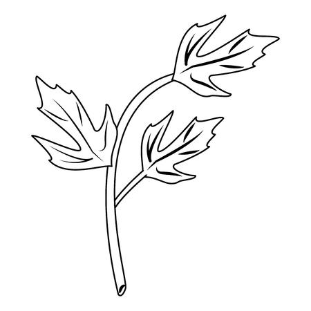 Il coriandolo lascia il disegno grafico dell'illustrazione di vettore del fumetto di erbe