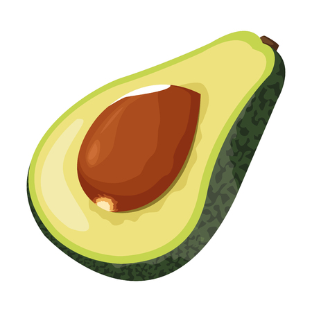 half avocado icon cartoon isolated vector illustration graphic design
