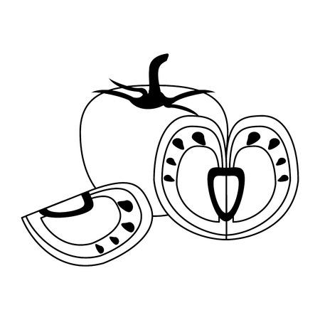 Fresh tomato slices cartoon vector illustration graphic design