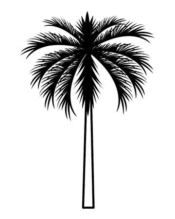 palm tree cartoon vector illustration graphic design Stock Illustratie