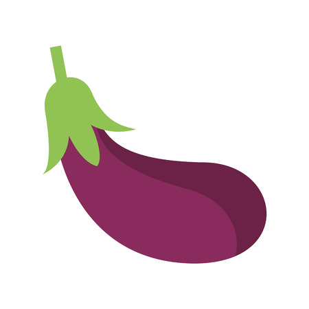 Eggplant fresh vegetable isolated vector illustration graphic design Ilustração