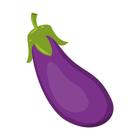 Eggplant fresh vegetable healthy food vector illustration graphic design Ilustração