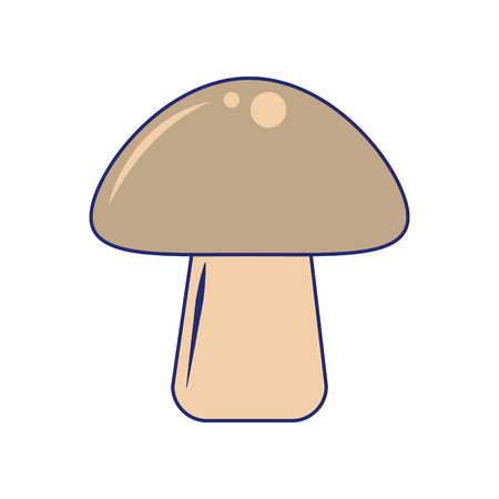 Mushroom fresh vegetable isolated vector illustration graphic design