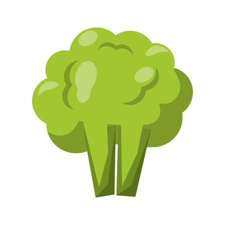 Broccoli fresh vegetable healthy food vector illustration graphic design